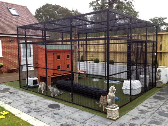 Details On Cat Enclosure