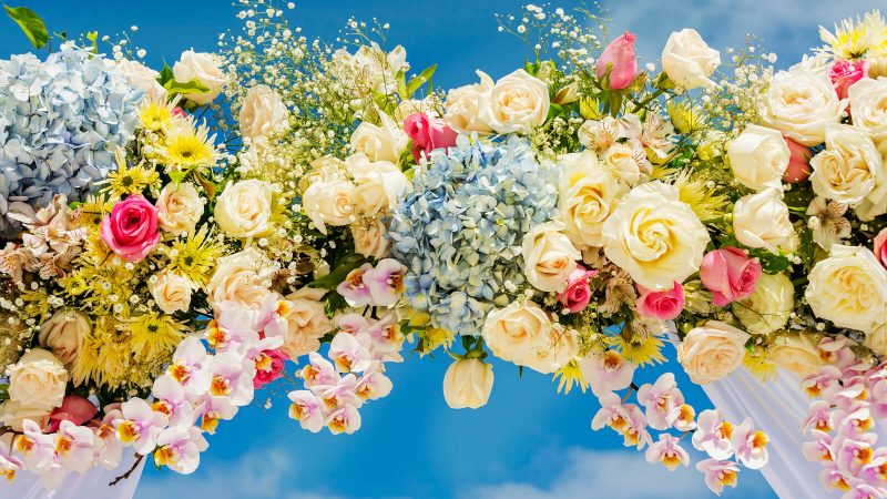 Learn What A Professional Has To Say On The Wedding Flowers