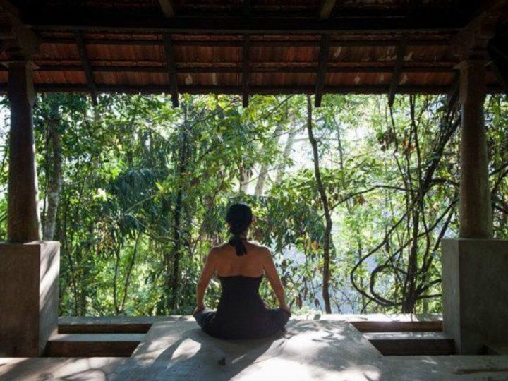 Thorough Analysis On The Ayurveda Retreat